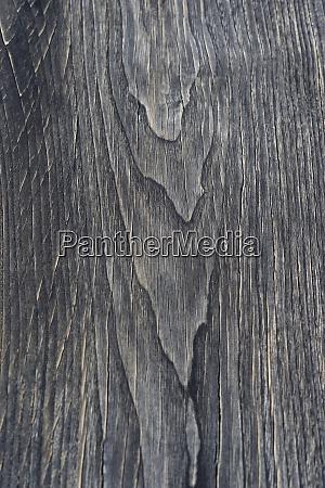 wood surface teak wood tectona grandis