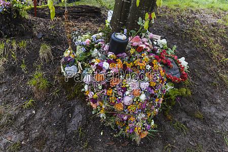natural tree burial