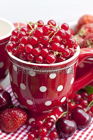 red summer fruits in polka dot