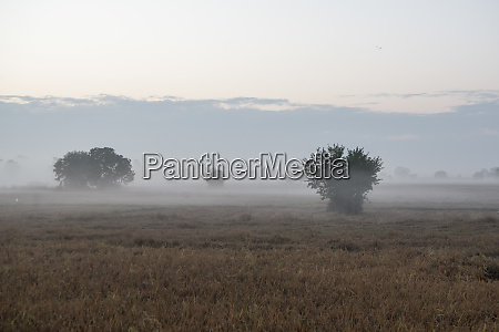 thailand phitsanulok landscape