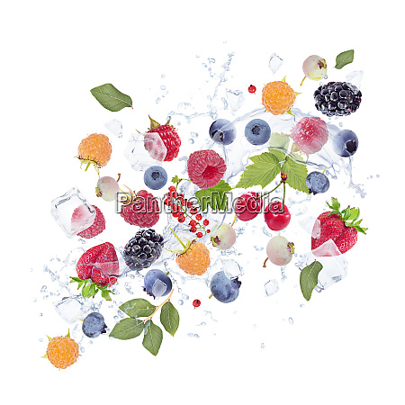 fresh berries with water splash and