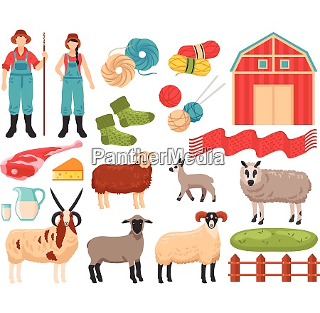 sheep breeding products flat icons collection