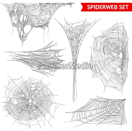 various types of spider web and