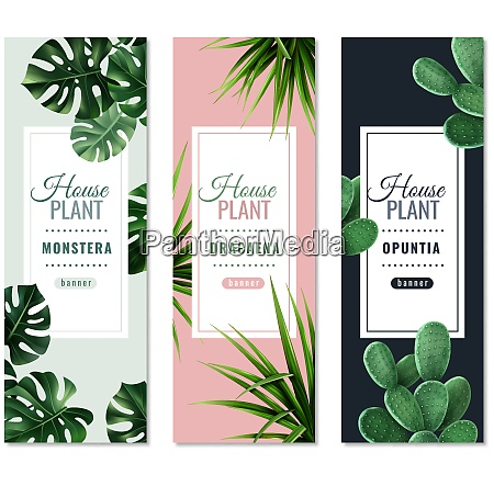 realistic house plants vertical banners with