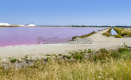 saline in the camargue