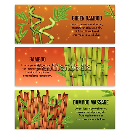 green bamboo interior decorative elements and