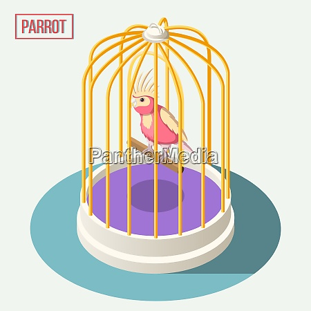 exotic pets isometric composition with parrot