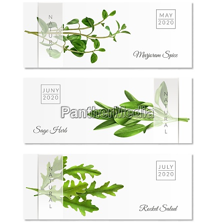set of horizontal banners with realistic