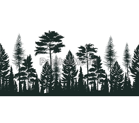 silhouette of pine forest with small