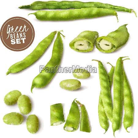 fresh farmer market green beans realistic