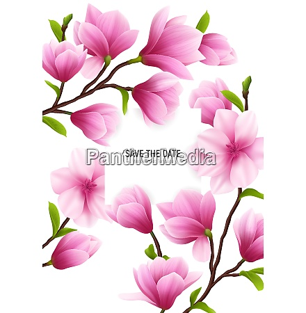 colored realistic magnolia flower frame with
