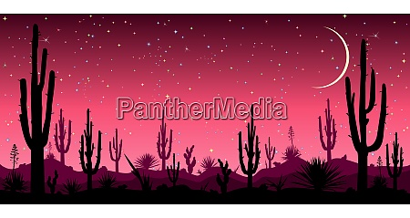 desert at night cacti silhouettes stars
