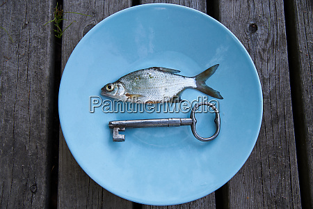 small silver fish on a plate