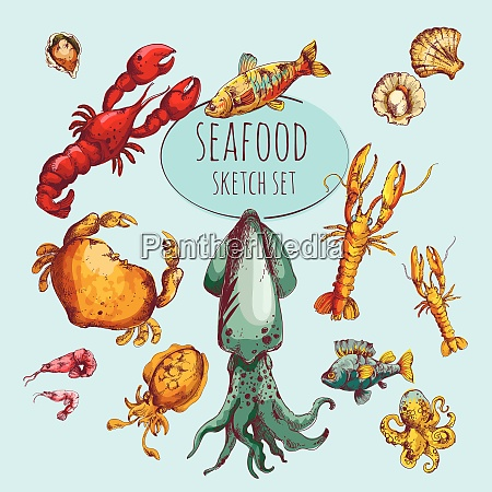 seafood fresh gourmet delicacy sketch colored