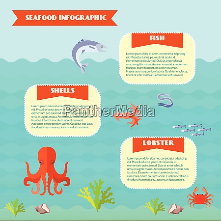 sea food infographics set with fish