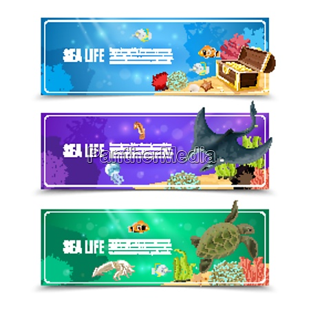 variants of underwater sea life and
