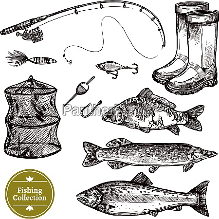 fishing sketch set isolated vector illustration
