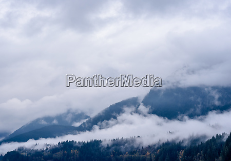 fog and clouds covering forested mountains