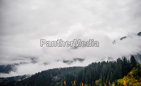 fog and clouds covering forested mountain