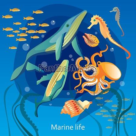 ocean underwater life background sea underwater