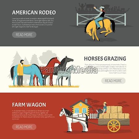 information on horses breeds handling 3