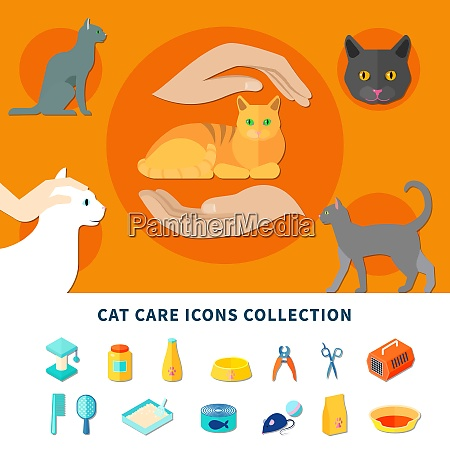 pet care accessories for cats icons