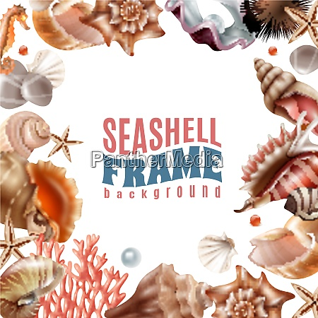realistic frame decorated with realistic seashells