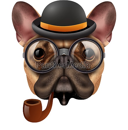 colored realistic vintage hipster bulldog composition