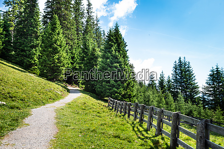 hiking trail in mountains