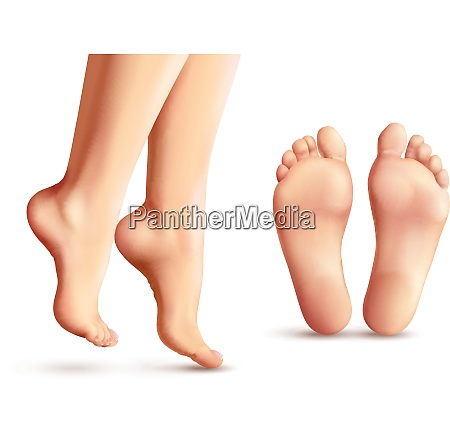 realistic female feet set with legs