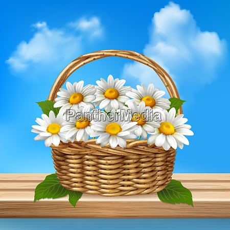 daisy realistic colored composition wicker basket