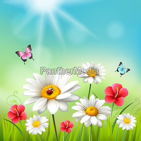 daisy realistic 3d composition flowers in