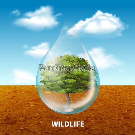 wildlife advertising poster with green tree