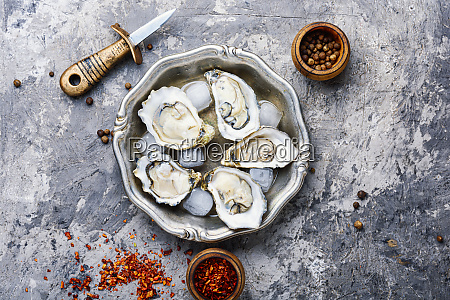 opened fresh oysters seafood