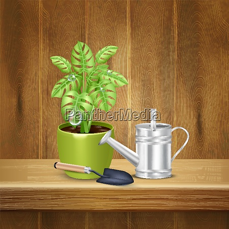 realistic, herb, background, with, decorative, plant - 27201531