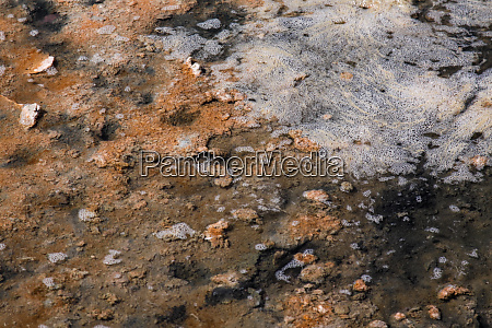 closeup salt lake