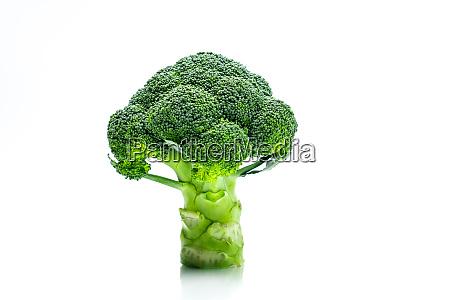 set of green broccoli brassica oleracea