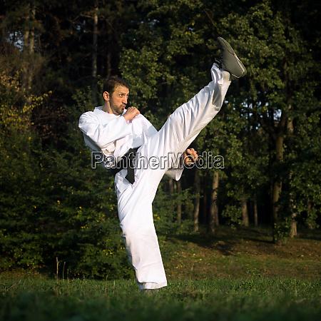 high kick martial arts