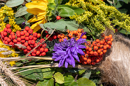 floristic bouquet of flowers herbs and