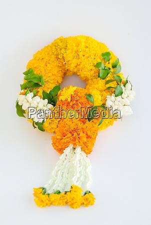 marigold garland flower garland white background