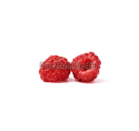 two whole ripe red raspberries on