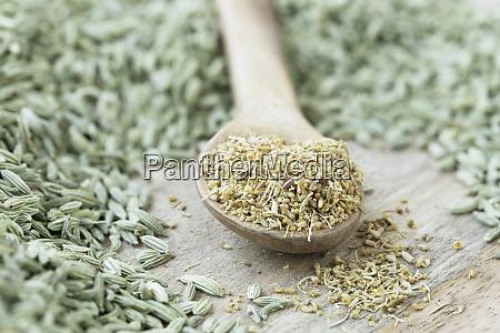 fennel pollen in spoon