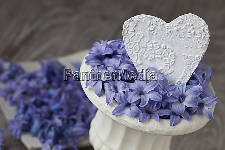 still life with blue flowers and