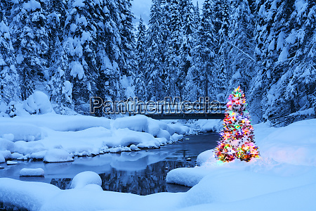 christmas tree beside a stream emerald