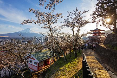 chureito pagoda in arakurayama sengen park