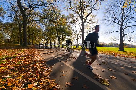 hyde park in autumn london england