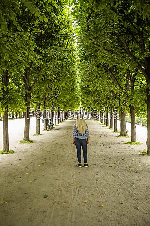 woman between rows of trees in