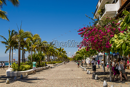 the malecon puerto vallarta jalisco mexico