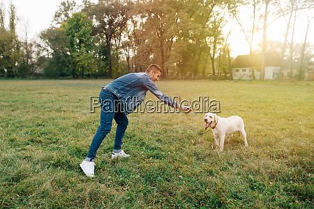 man and dog labrador have fun