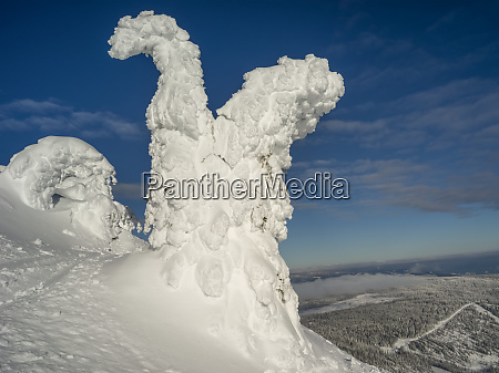 snow ghost with a view of